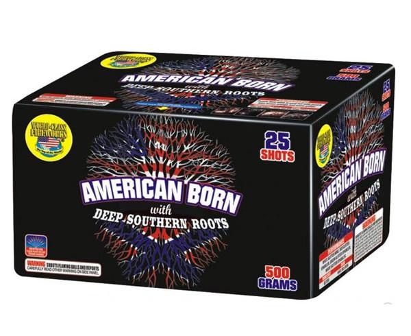 american_born_th