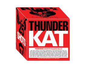 Thunder Kat